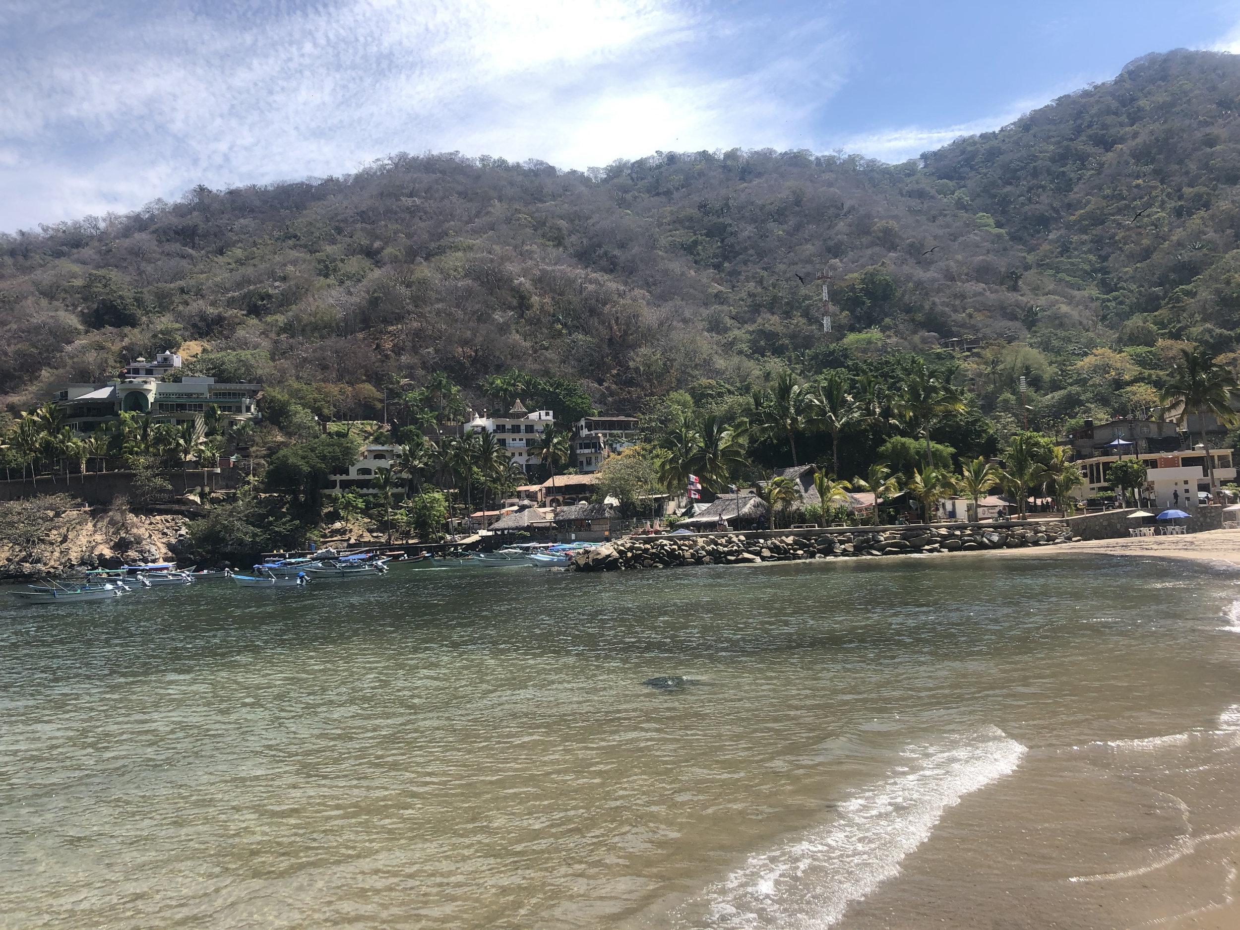 boca hike to colomitos beach.jpeg