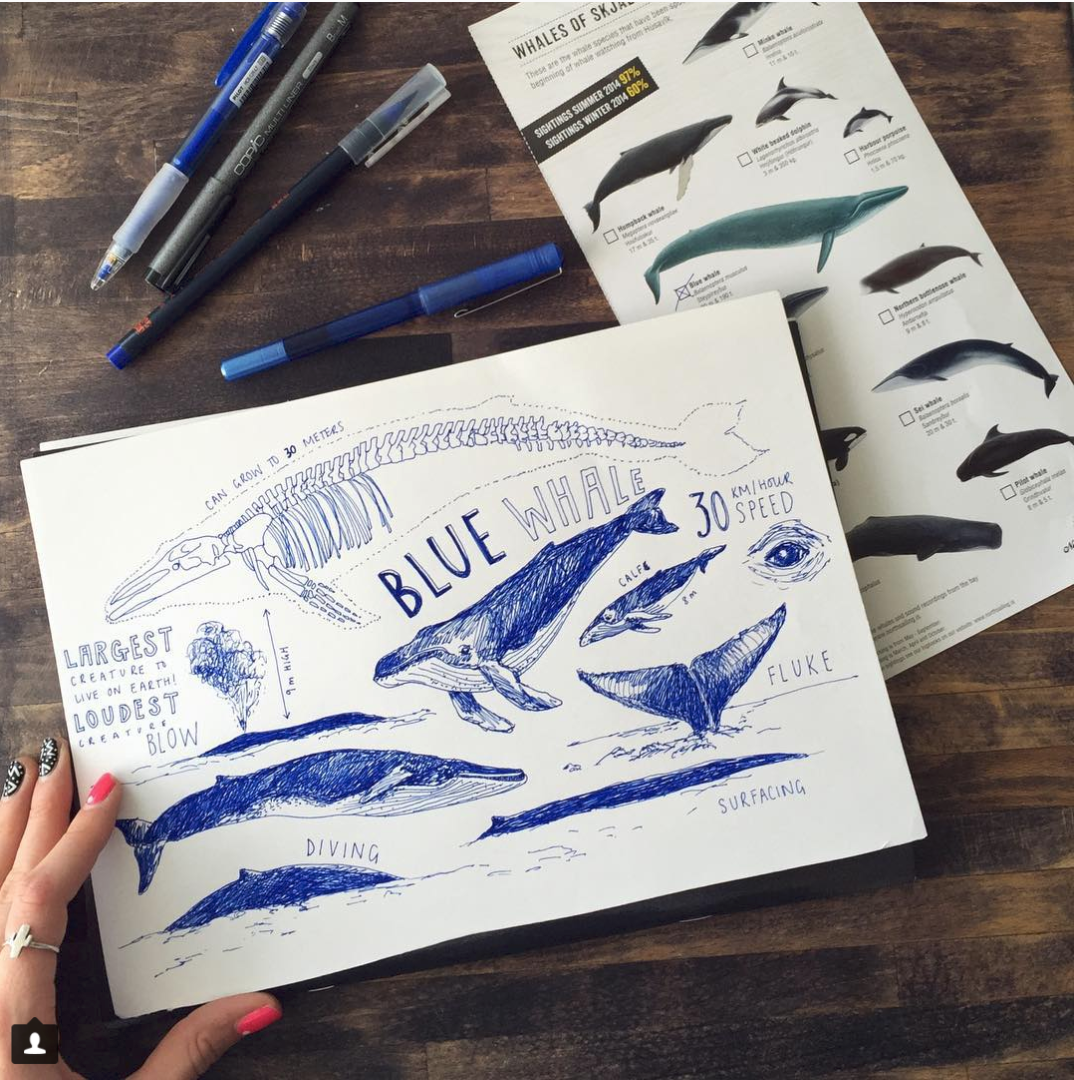 Peita Blythe_Blue Whales Postcard.png