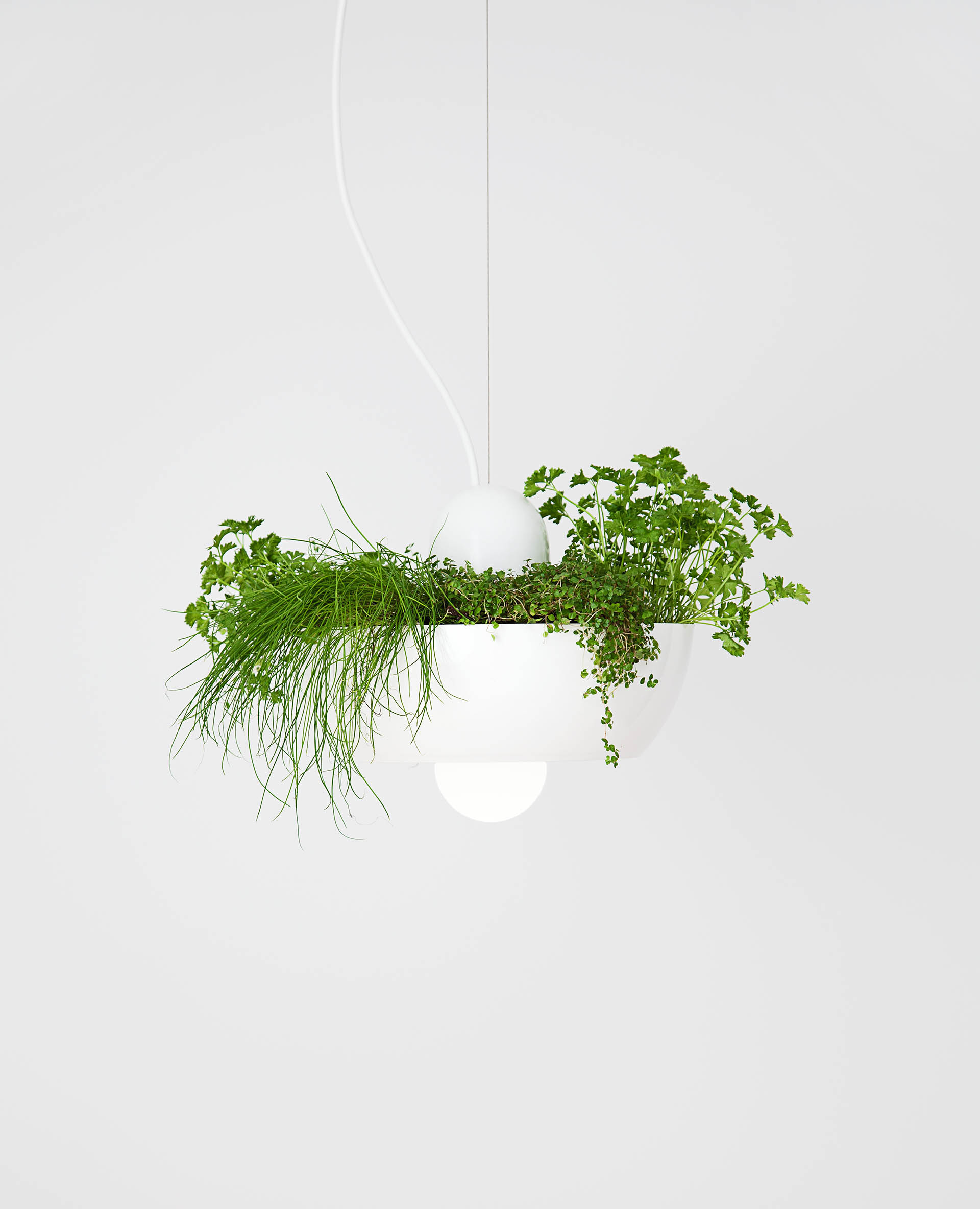 Well Light — Planter