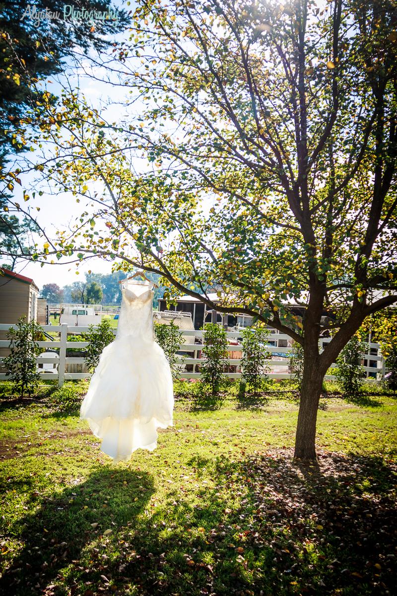 Wedding-8241.jpg