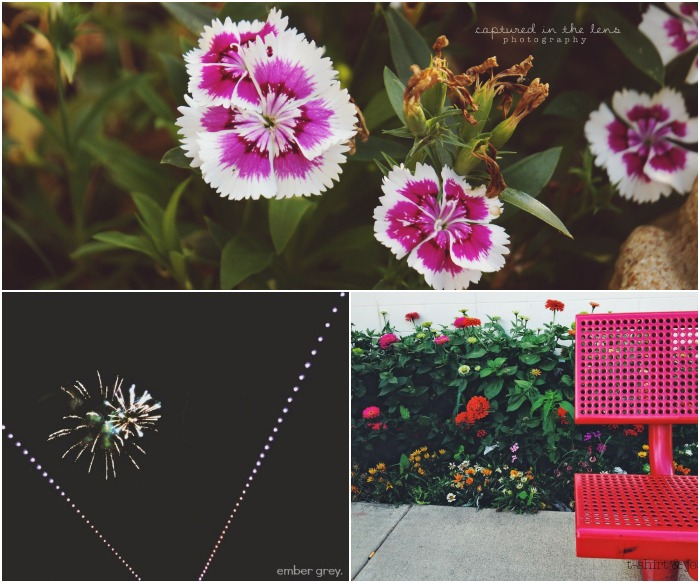 Find Beauty Collage