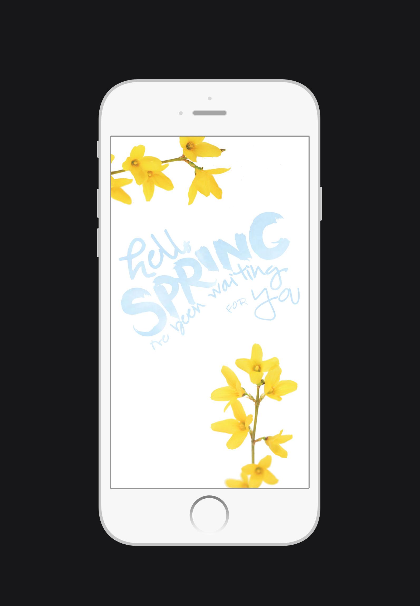 Free Spring iPhone Wallpaper