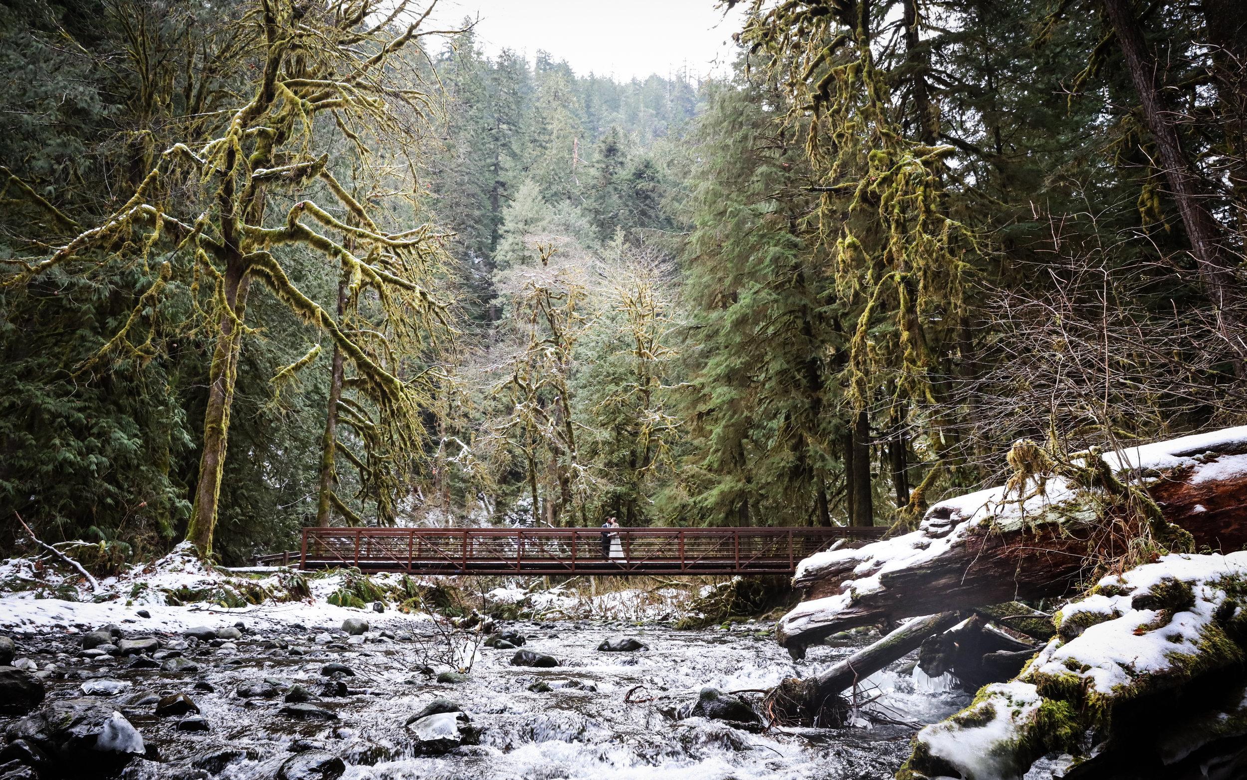 Sublime Stems | Photos by Kintz  |  Kiana Lodge