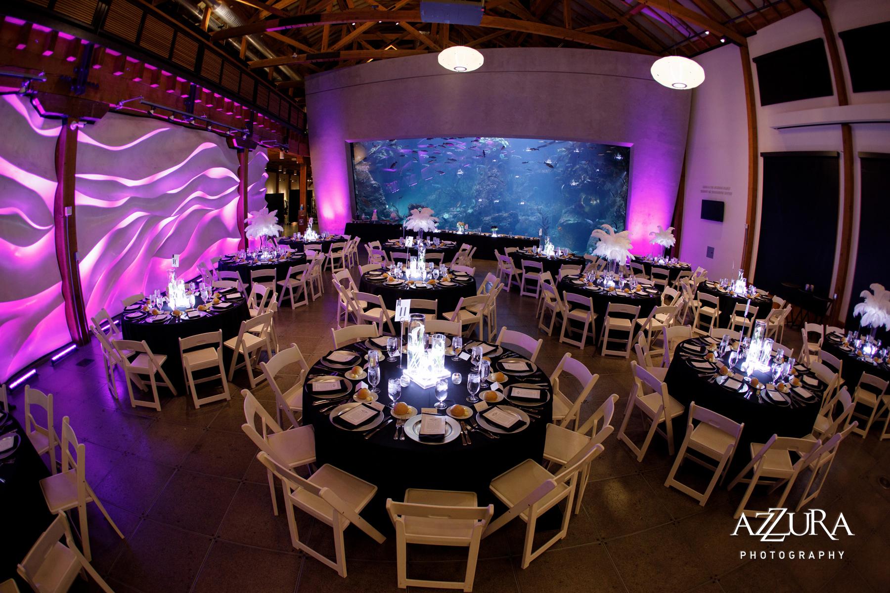 Sublime Stems | Azzura Photography | Seattle Aquarium