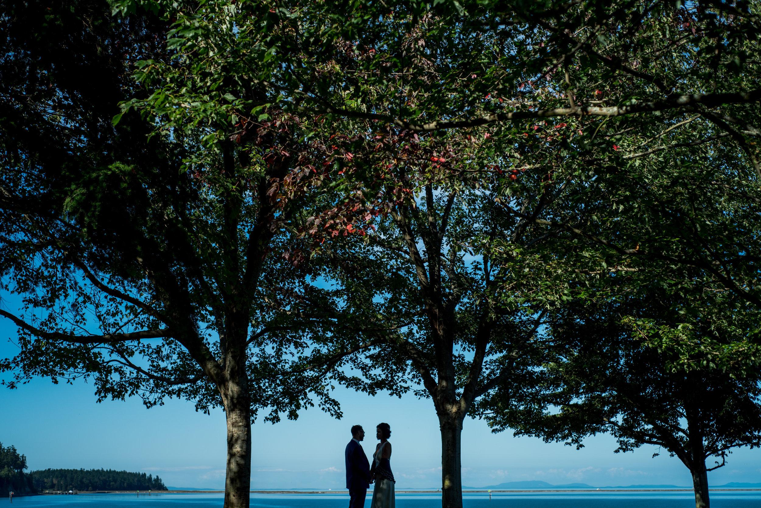 sequim-petrichor photo-elopement-desitination-pacific northwest-cross country-florist-washington-sublime stems-14.jpg