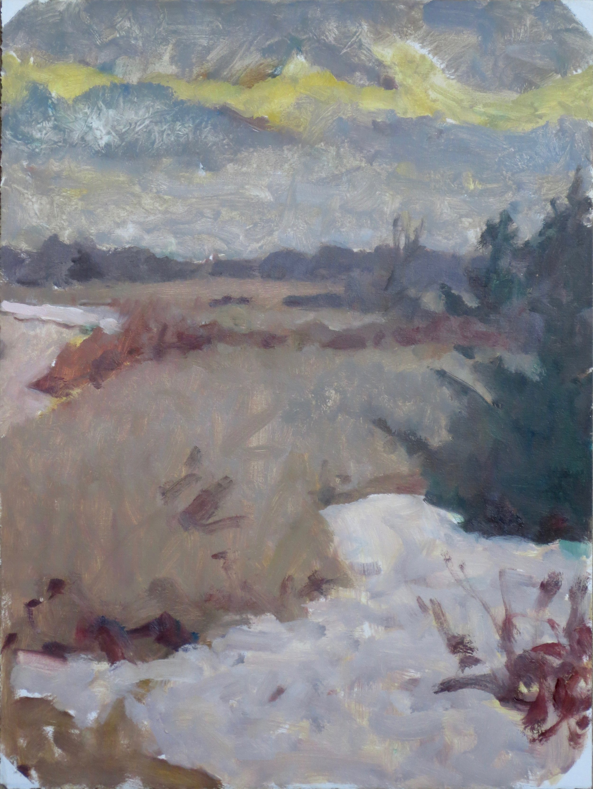 Winter, late afternoon, 2016
