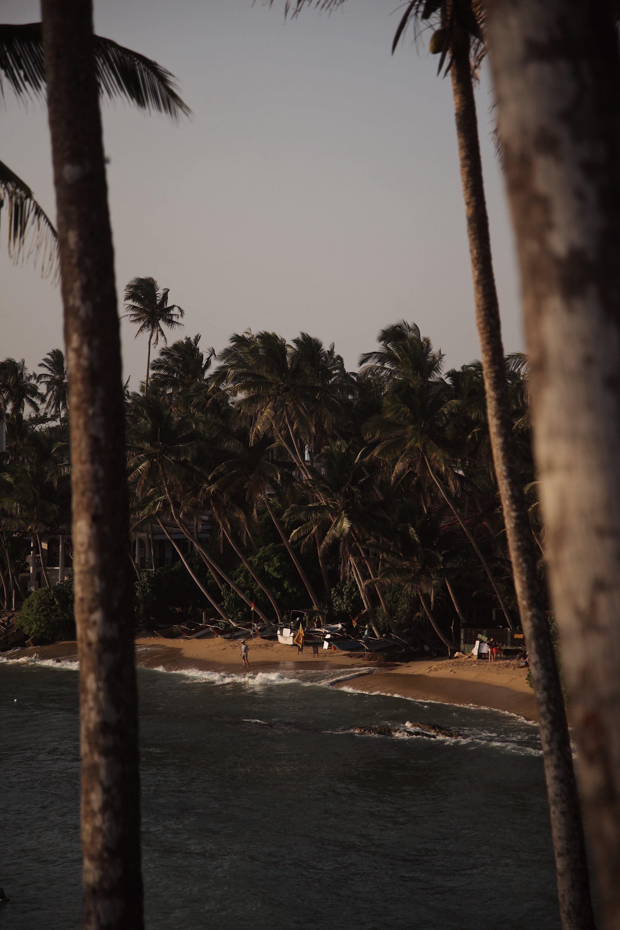 ceylon sliding - SRI LANKA
