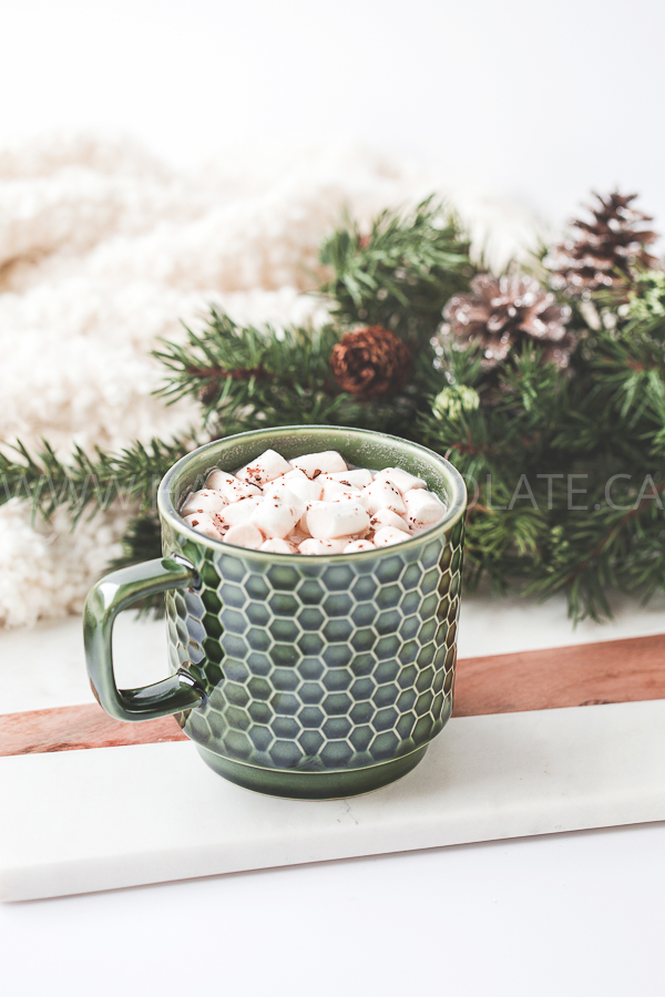 haute-chocolate-styled-stock-photography-cozy-winter-holiday-4.jpg