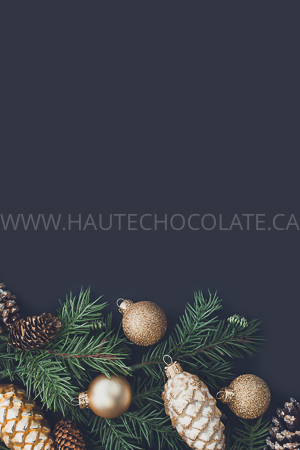 haute-chocolate-styled-holiday-stock-photos-mockups-16.jpg