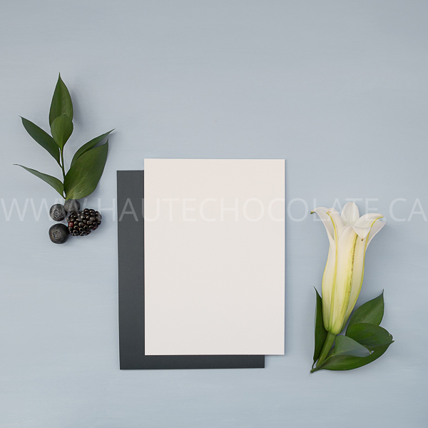 stock-photo-mockup-ipad-frame-mug-simple-modern-haute-chocolate-styled-stock-photography-23.jpg