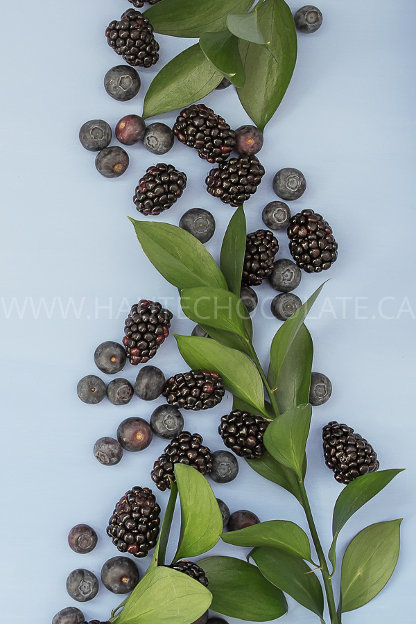 fresh-fruit-styled-stock-photo-colorful-haute-chocolate-styled-stock-photography-33.jpg