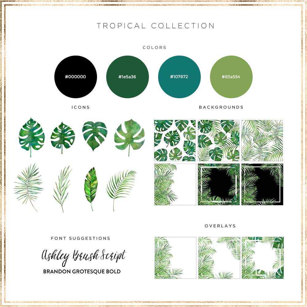 Tropical Theme Branding Elements. Hand painted watercolor designs created exclusively for the Haute Chocolate Styled Stock Library