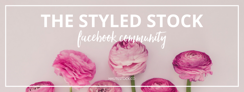 Your social media will be looking fresh with this social media cover image created using Haute Stock floral images. To see more floral graphic examples, click here to view the full article!