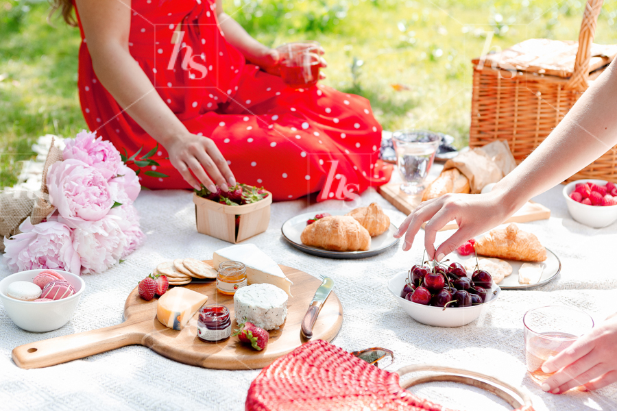 haute-stock-photography-picnic-collection-final-12.jpg