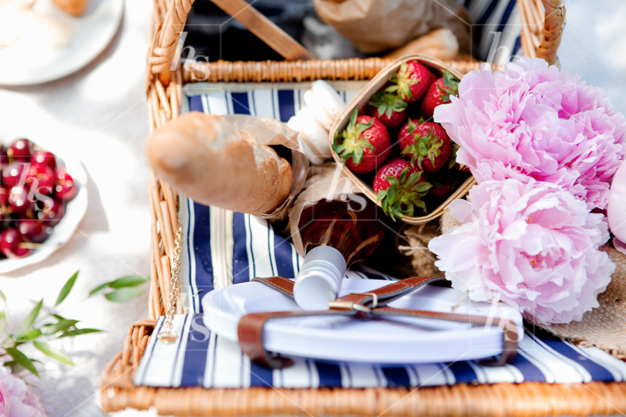 haute-stock-photography-picnic-collection-final-17.jpg