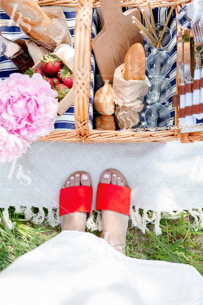 haute-stock-photography-picnic-collection-final-20.jpg