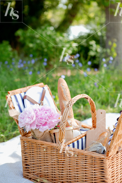 haute-stock-photography-picnic-collection-final-24.jpg