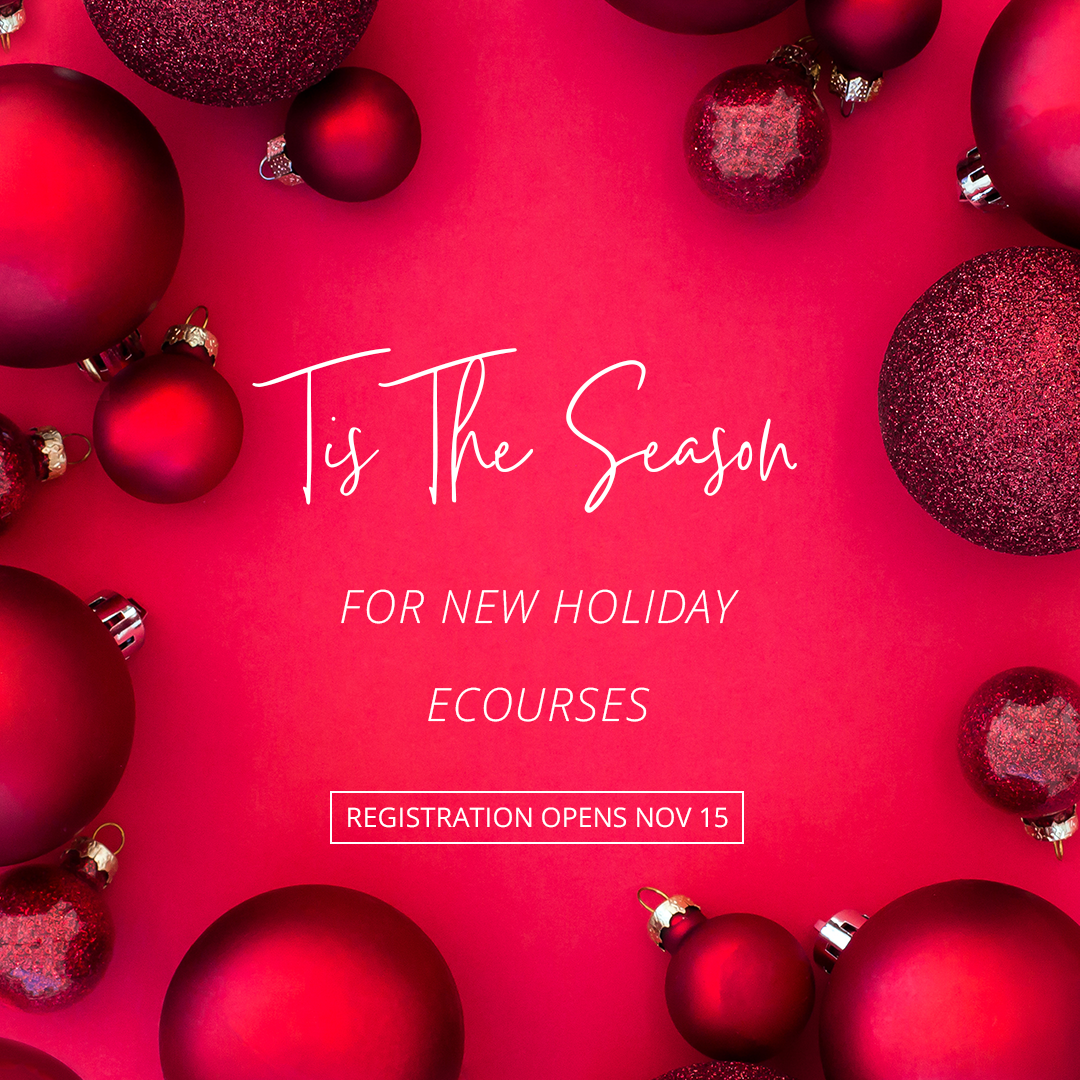Need to get more viewers joining your business? Haute Stock's Pink & Red Holiday Collection is what your graphics need to take your holiday promos to the next level.