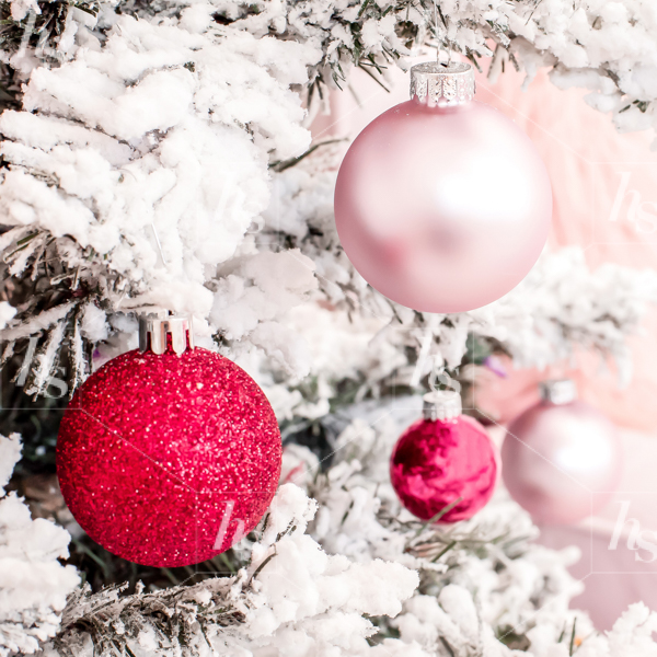 haute-stock-photography-pink-red-holiday-collection-final-6.jpg