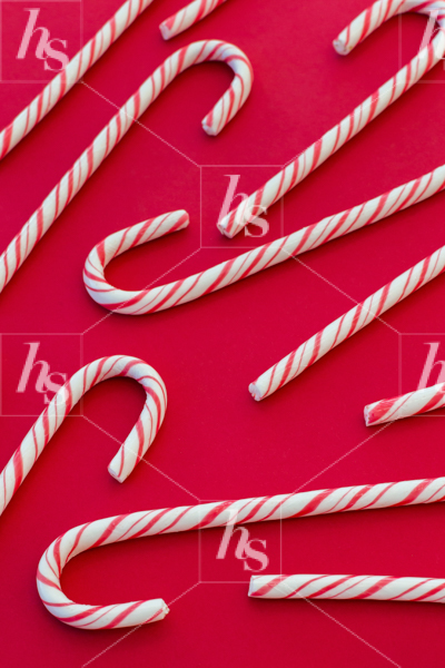 haute-stock-photography-pink-red-holiday-collection-final-7.jpg