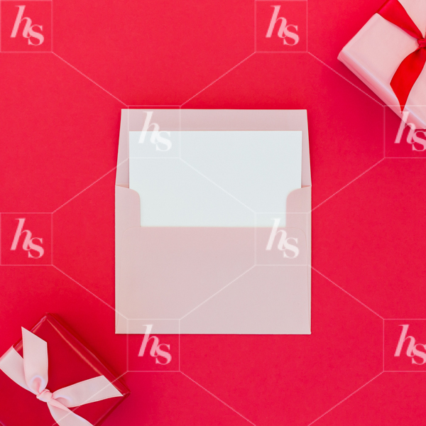 haute-stock-photography-pink-red-holiday-collection-final-17.jpg