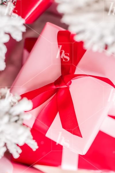 haute-stock-photography-pink-red-holiday-collection-final-18.jpg