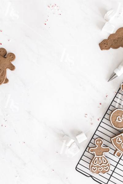 haute-stock-photography-hot-cocoa-collection-9.jpg