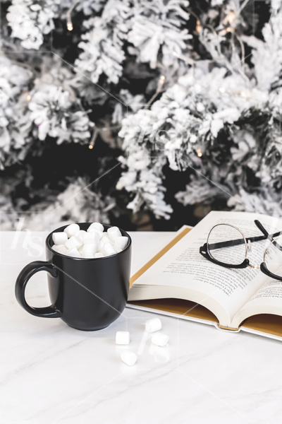 haute-stock-photography-hot-cocoa-collection-12.jpg
