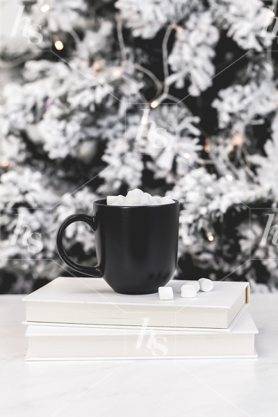 haute-stock-photography-hot-cocoa-collection-25.jpg