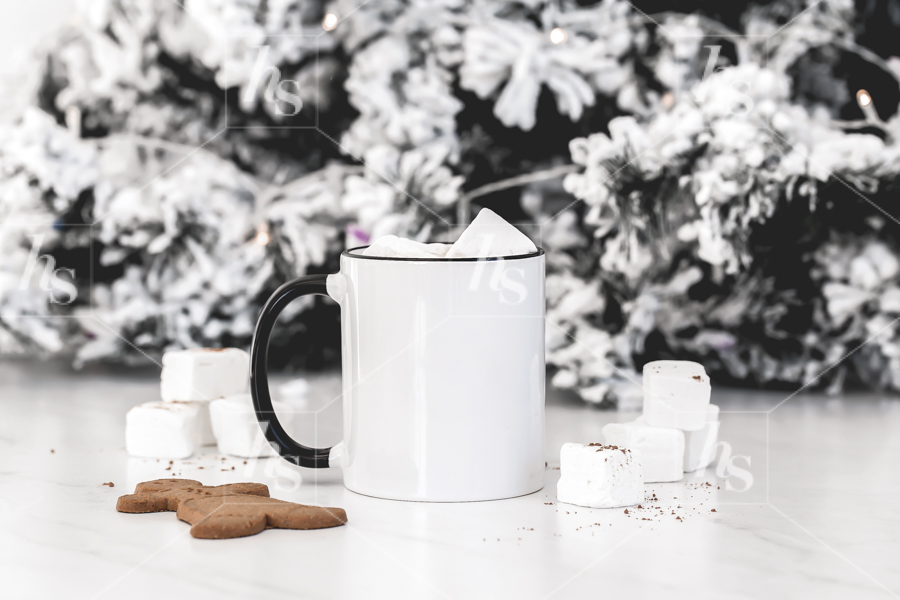 haute-stock-photography-hot-cocoa-collection-26.jpg