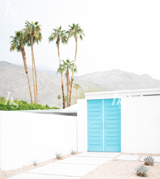haute-stock-photography-palm-springs-collection-final-6.jpg