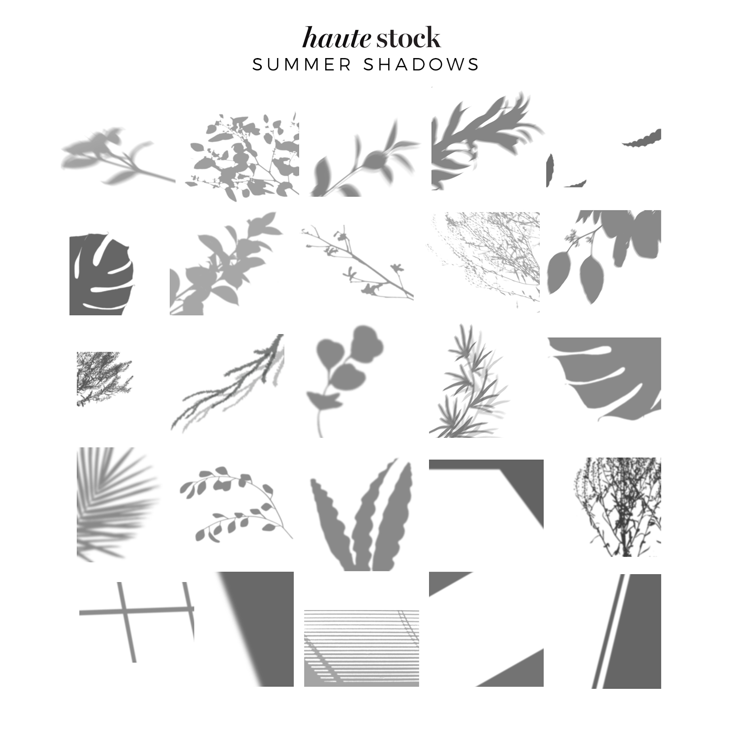 Botanical & abstract shadow overlays for mood-setting graphics for your brand from Haute Stock! Click to see a design tutorial on how to use these graphics in your own designs!