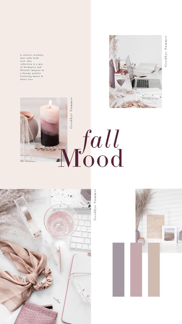 Paleta de cores feminina do outono inspirada em dizer adeus ao verão e olá ao outono.  Essas imagens da área de trabalho e da área de trabalho da Haute Stock são perfeitas para mulheres empreendedoras, blogueiras e criativas com cores suaves da marca.  Clique para ver mais Inspiração da paleta de cores de outono!