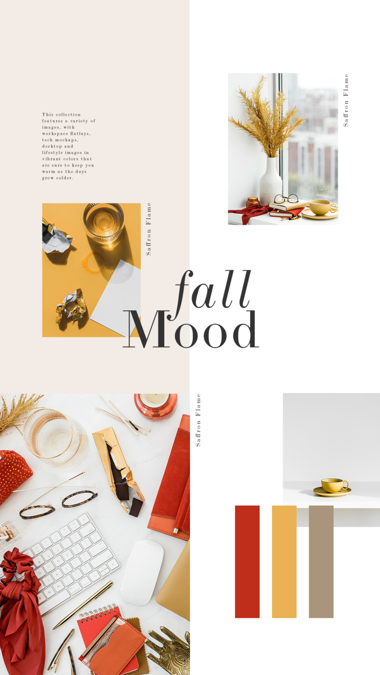 Vermelho rubi, laranja queimado e amarelo mostarda criam uma bonita paleta de cores de outono nesta bela e ousada coleção de outono da Haute Stock chamada Saffron Flame.  Clique para ver mais!