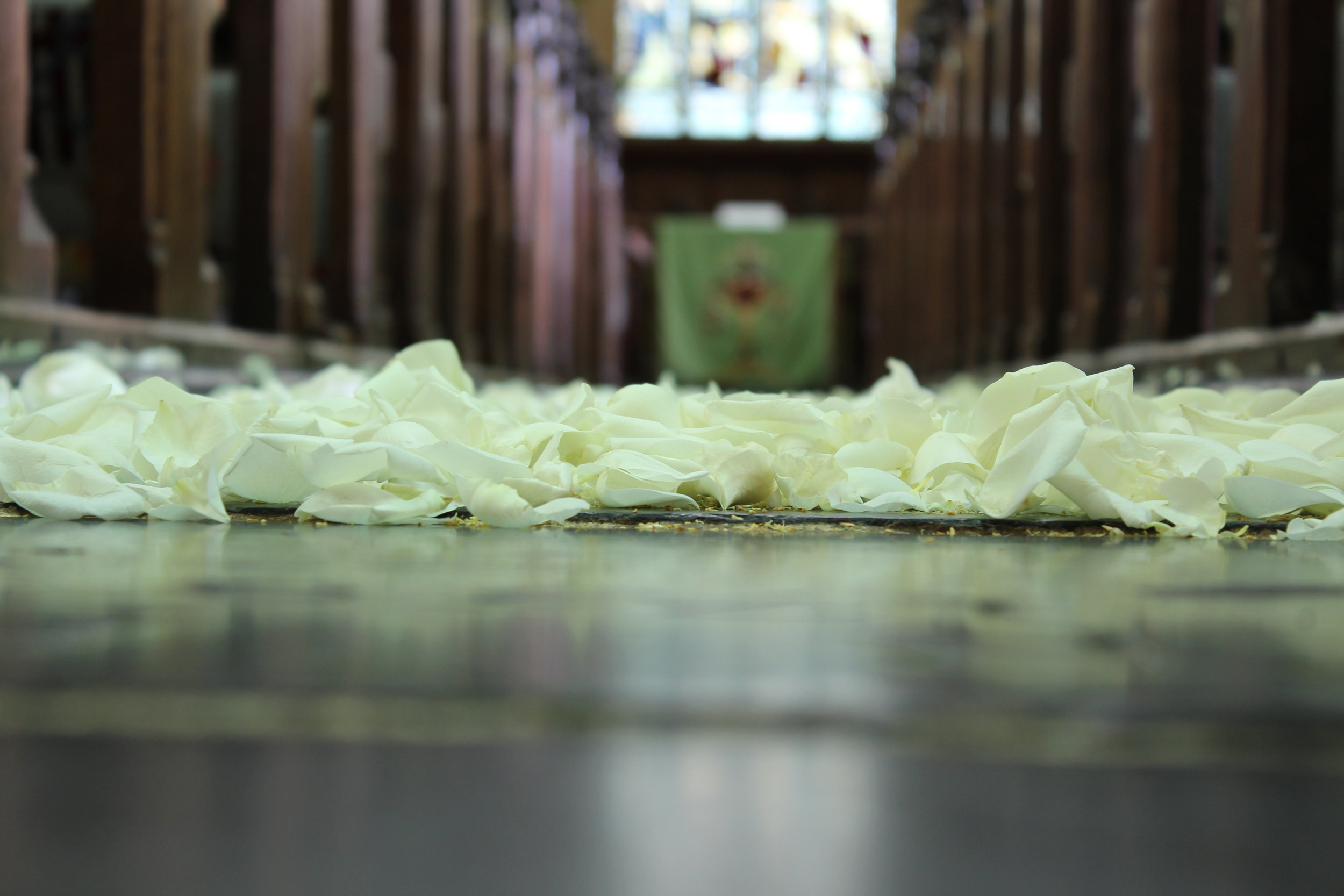 Rose Petal Wedding Aisle.JPG