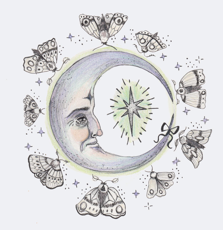 Moths & Moon