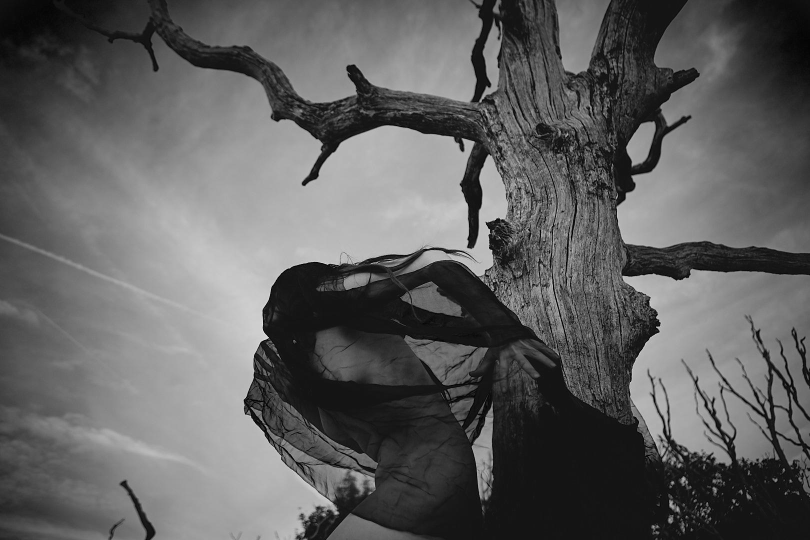 Photo by Konstantin Alexandroff