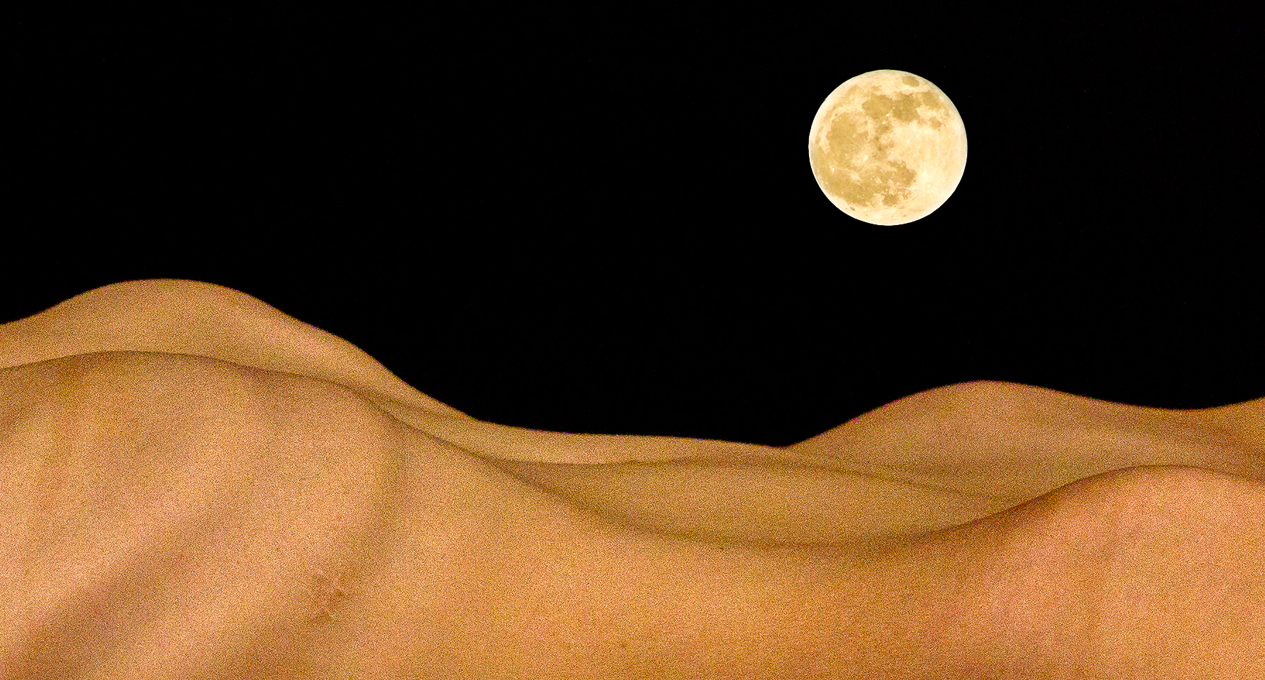 Anatomical_Landscapes_I_-_Desert_Moon.jpg