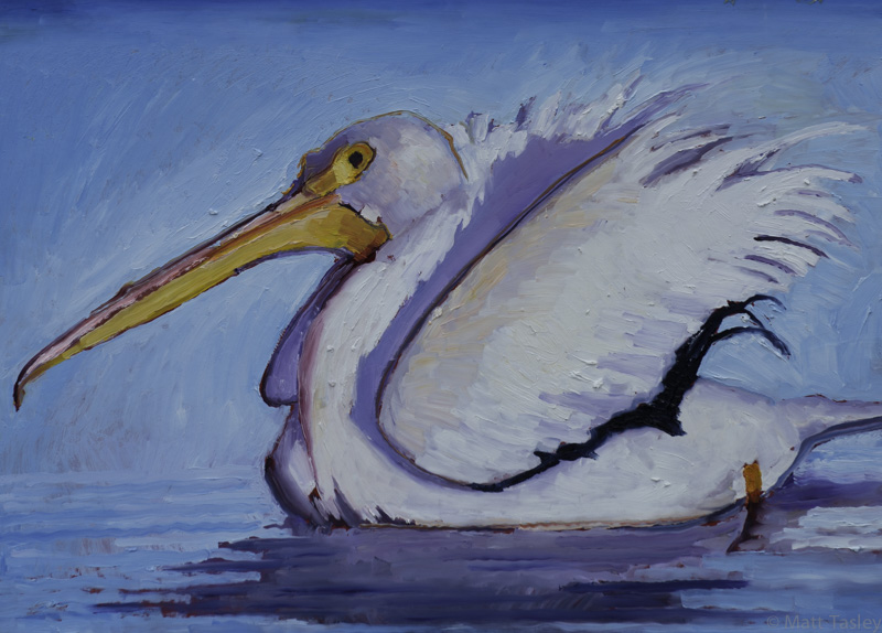 """White Pelican"", Oil on masonite, 30"" x 46"""