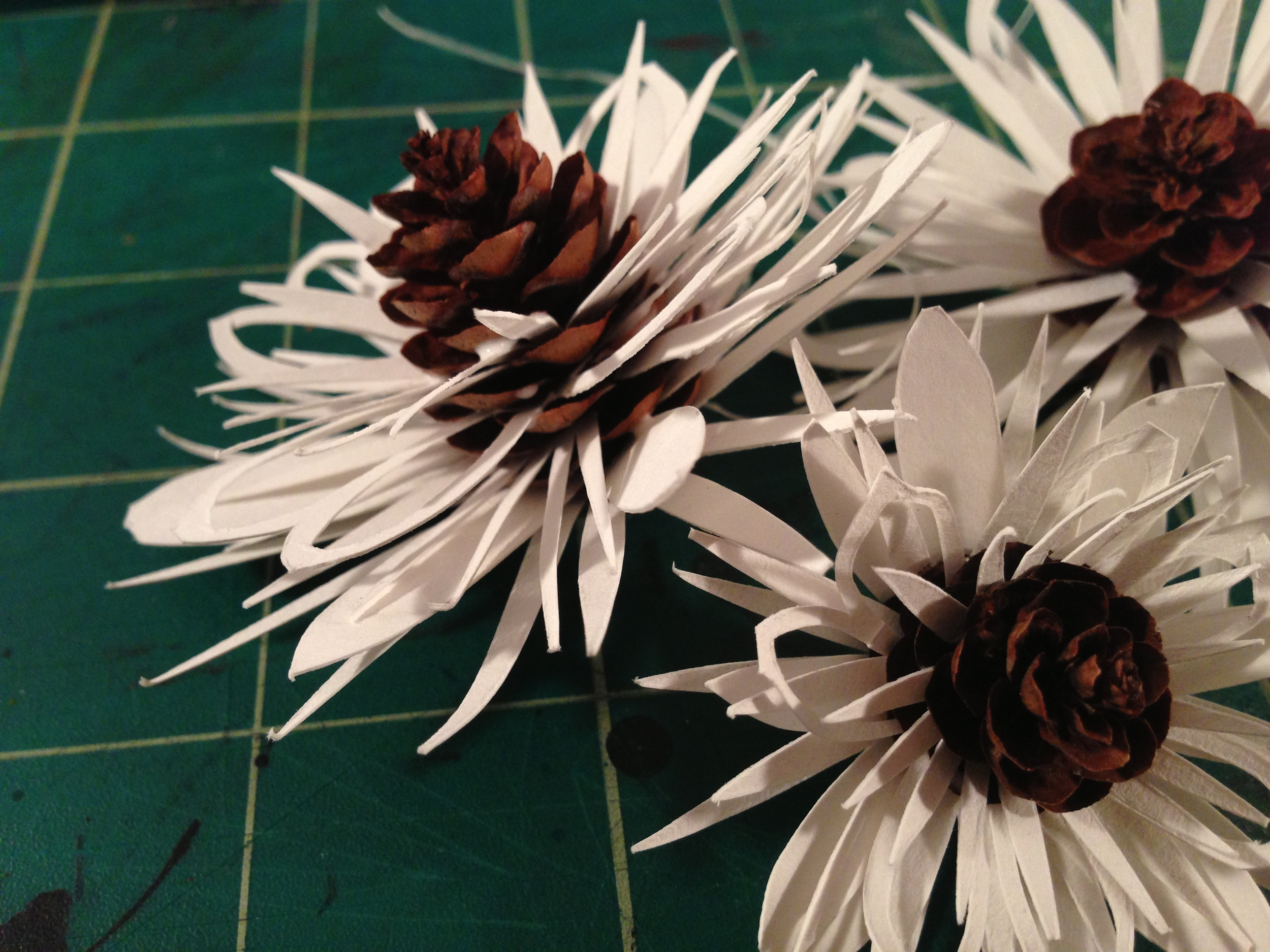 Other Nature: Winter Flowers