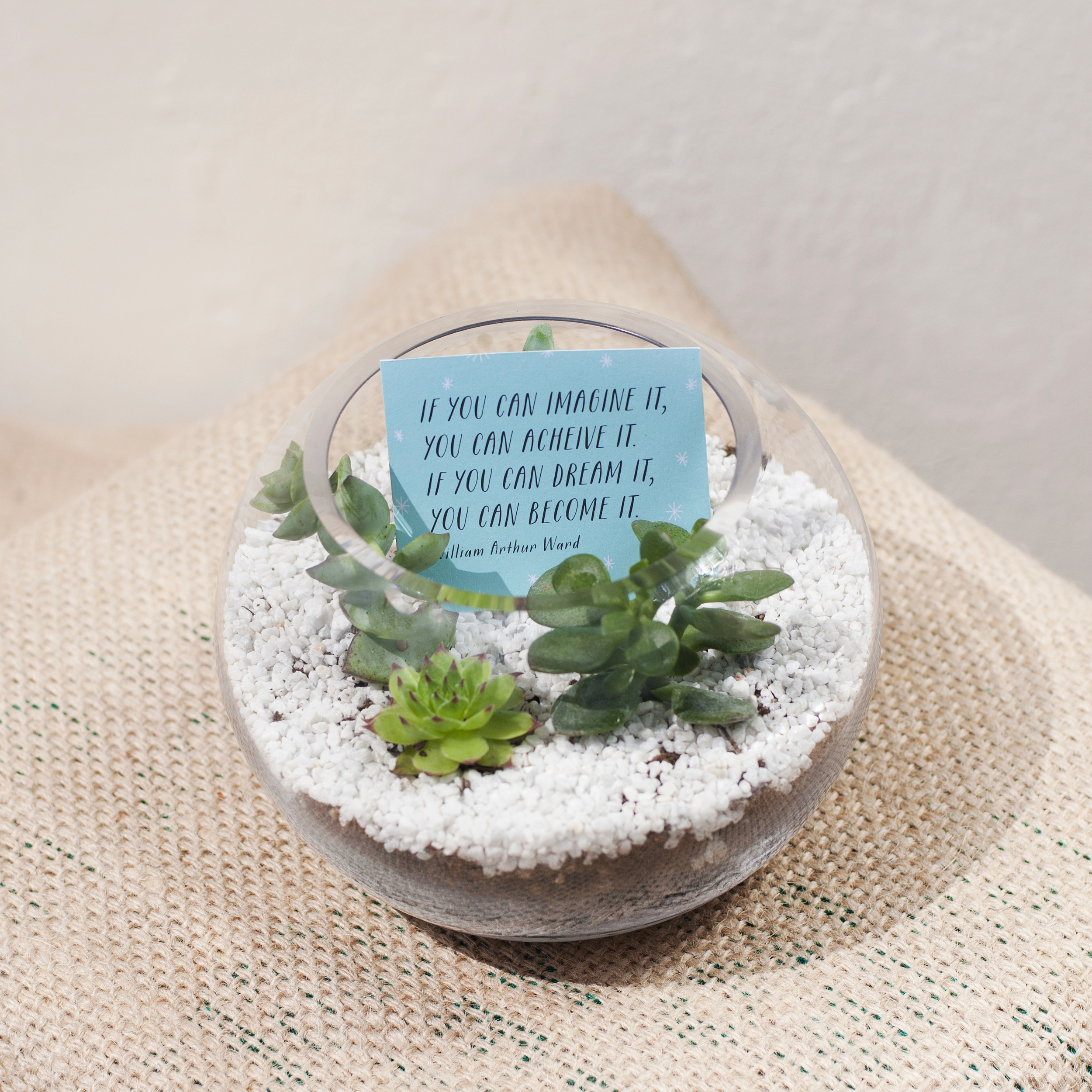 INSPIRE ME  Be inspired by our terrariums with wise words of inspiration.  If ever you need that pick me up, all you need to do is take a look at our inspirational terrariums.  They make awesome desk or mantlepiece buddies and measure approx 15.5cm wide and 12 cm tall.  $25