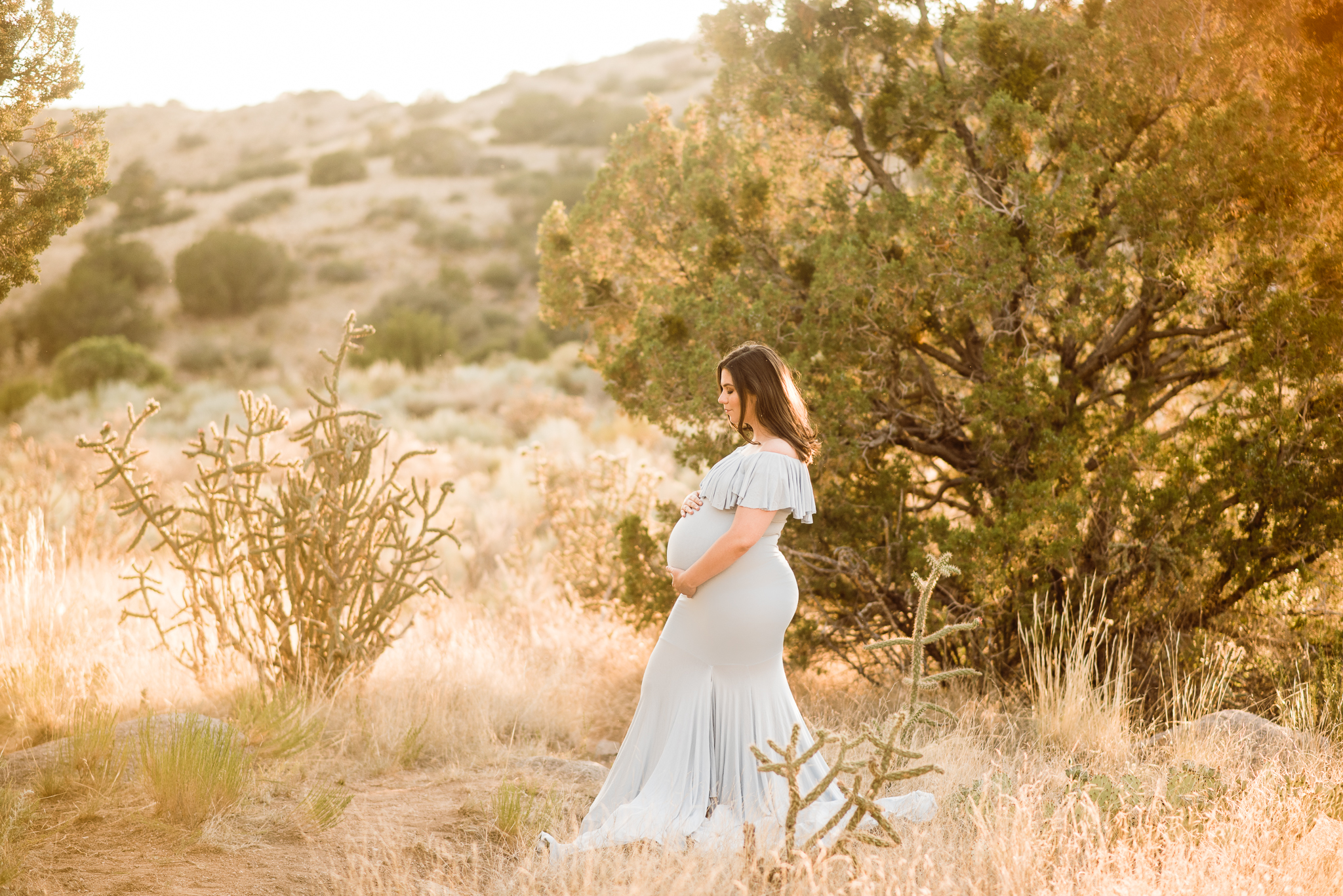 Albuquerque Maternity Photographer-16.jpg