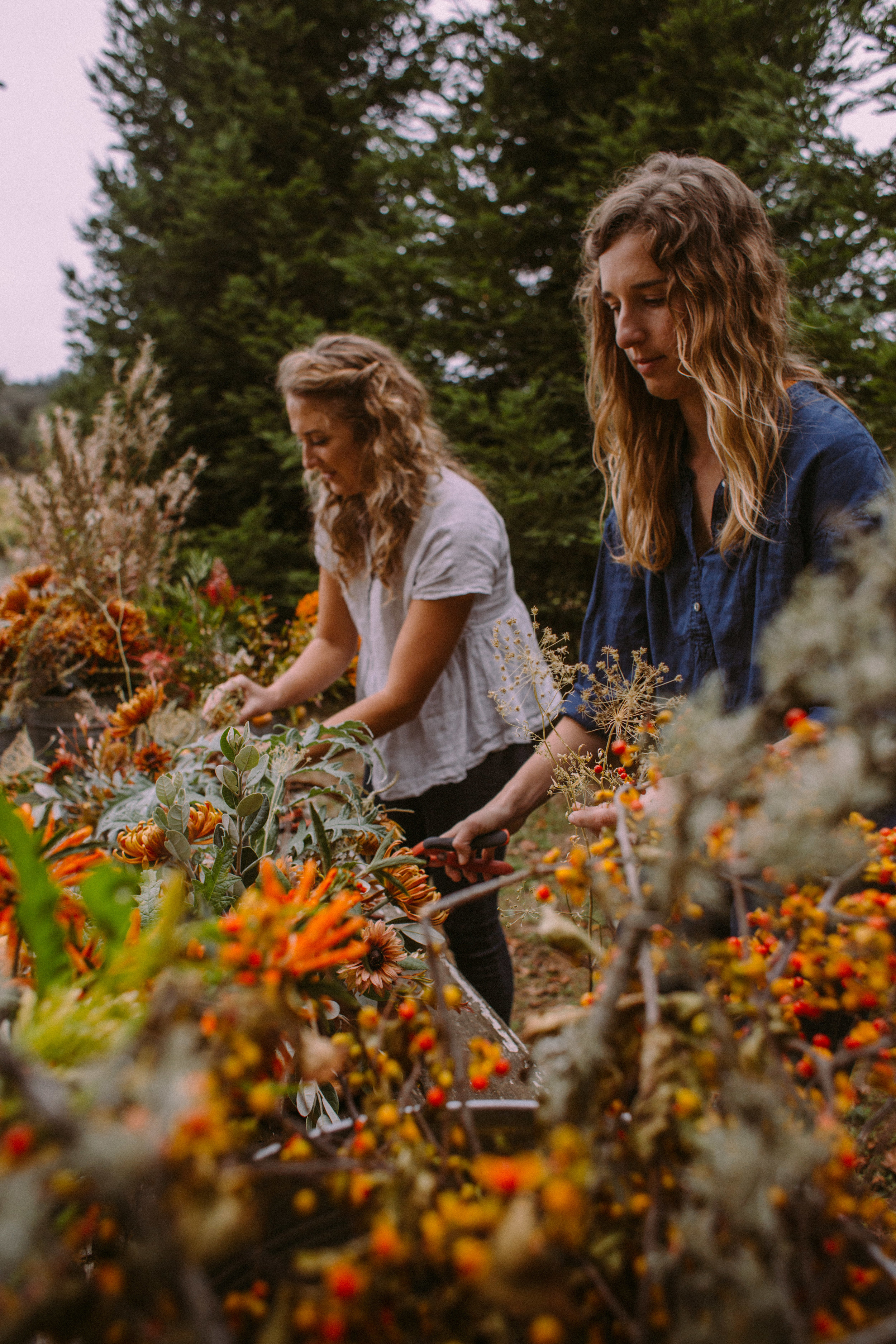 Heather & Camille of Venn Floral