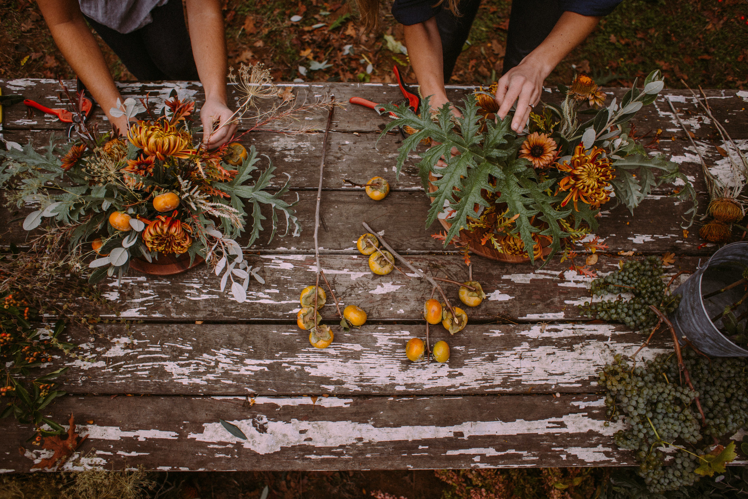 The hands of Venn Floral at work. Photographed by Collin Morrow at Rowan Farm.