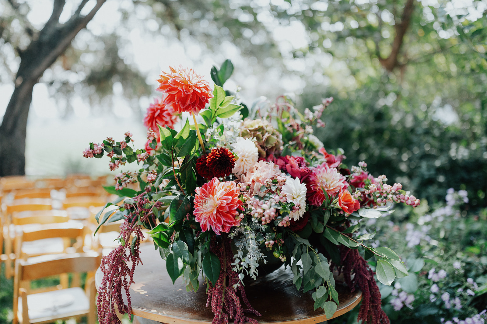 Lush and vibrant ceremony flowers with Amaranth, Dahlias, Snowberry, and antique Hydrangea by Venn Floral in Healdsburg at Ru's Farm photographed by Logan Cole.