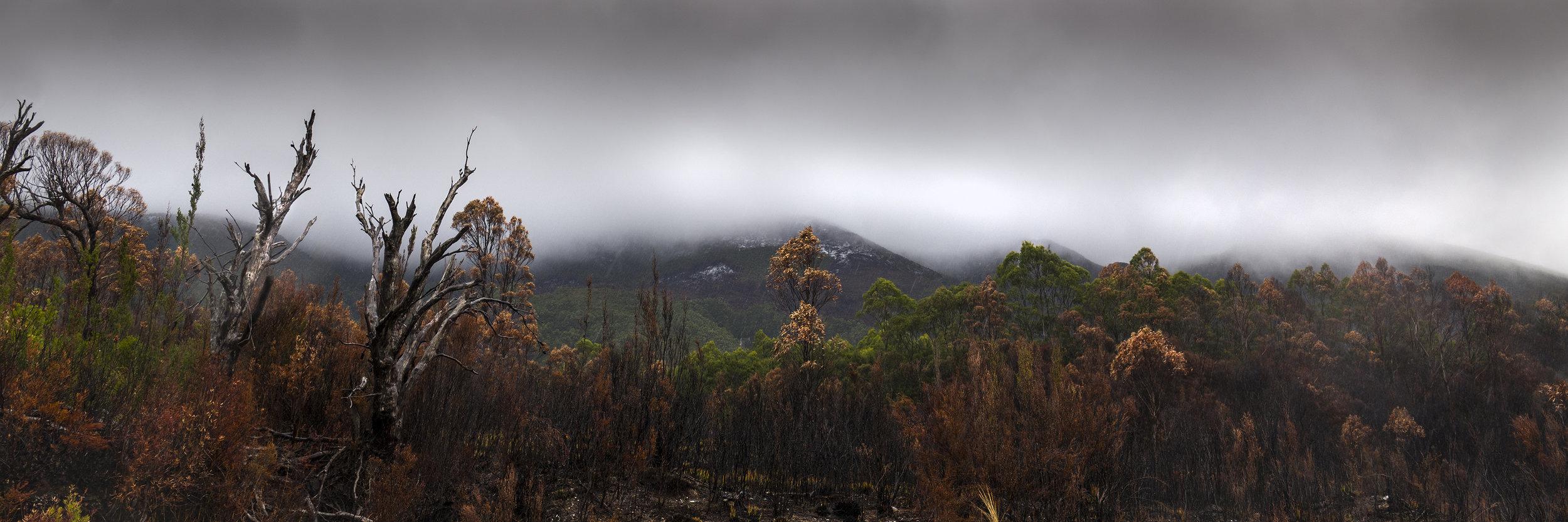 Fire Mist