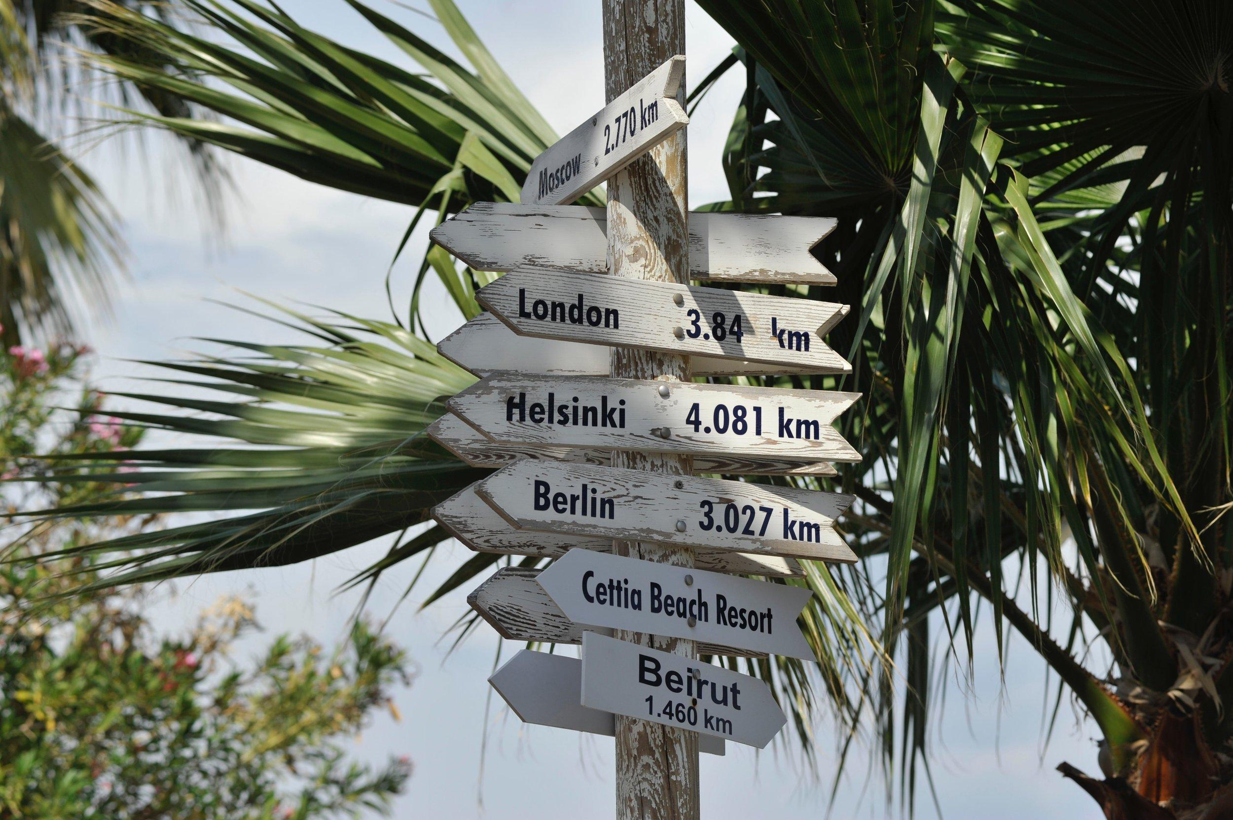 growth-hanging-island-1008164.jpg