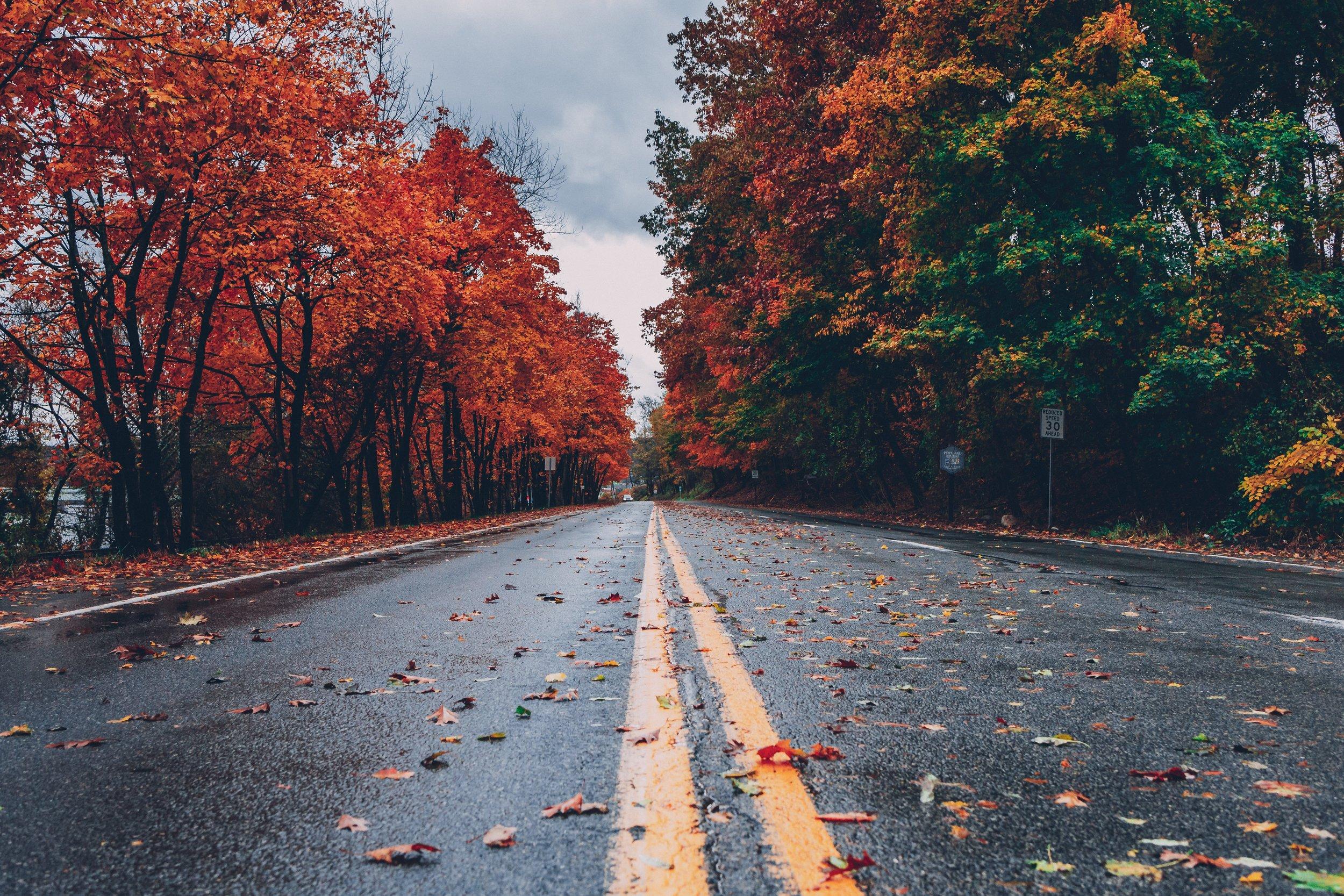 colorful-wallpaper-colors-of-autumn-computer-wallpaper-1563356.jpg
