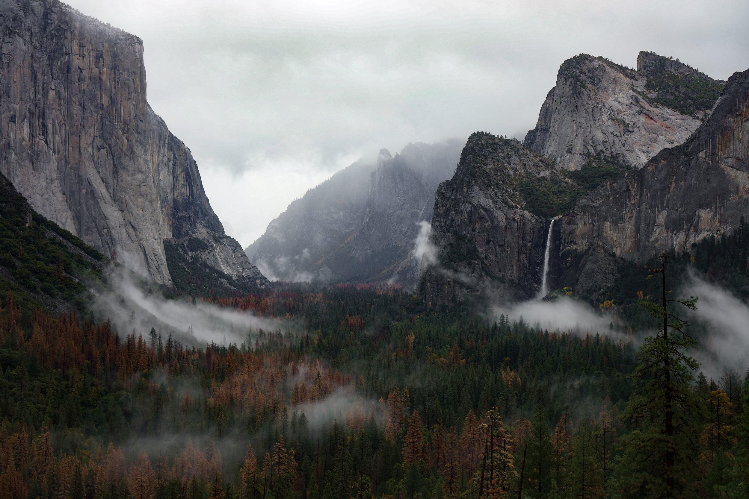Yosemyte-2.jpg