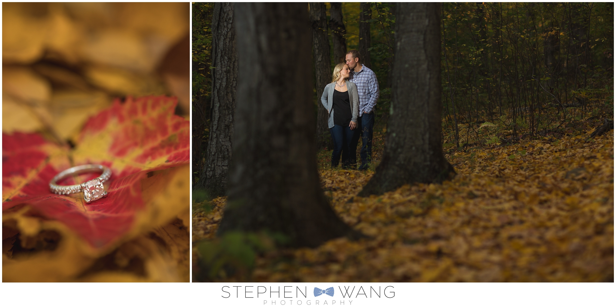 Stephen Wang Photography Connecticut Engagement Session photographer Wadsworth Mansion Park Middletown Autum Fall Foliage CT New Haven-10-23_0002.jpg